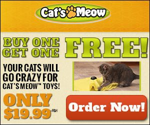Cats Meow Toy Undercover Electronic Mouse Game