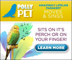 Perfect Polly – Amazing Life-Like Parakeet Moves and Sings