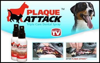Plaque Attack Tartar Spray for Dogs and Cats