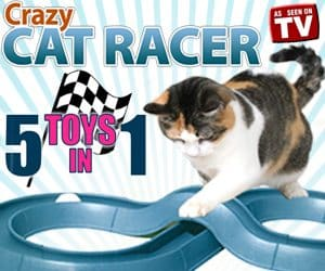 Crazy Cat Racer