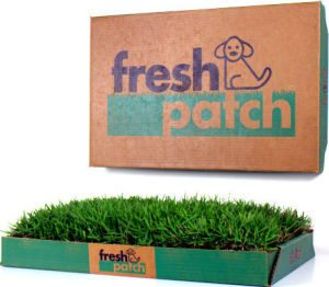 Fresh Patch | Real Grass Indoor Dog Potty on Shark Tank