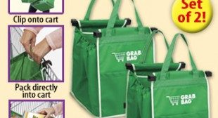 Grab Bag a Shopping Cart Bag That Clips On