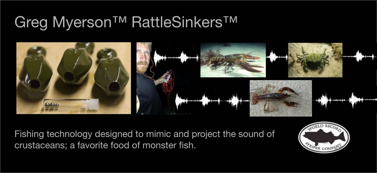 Sound based rattlesinkers and fishing lures on shark tank for Fishing lure as seen on tv
