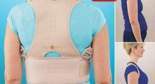 Royal Posture Back support brace