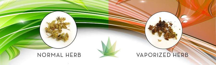 vaporized herb