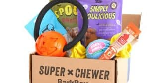 Super Chewer BarkBox Long Lasting Dog Toys