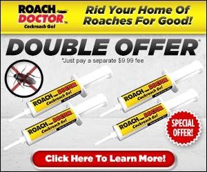 roach doctor