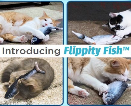 flippity fish cat toy